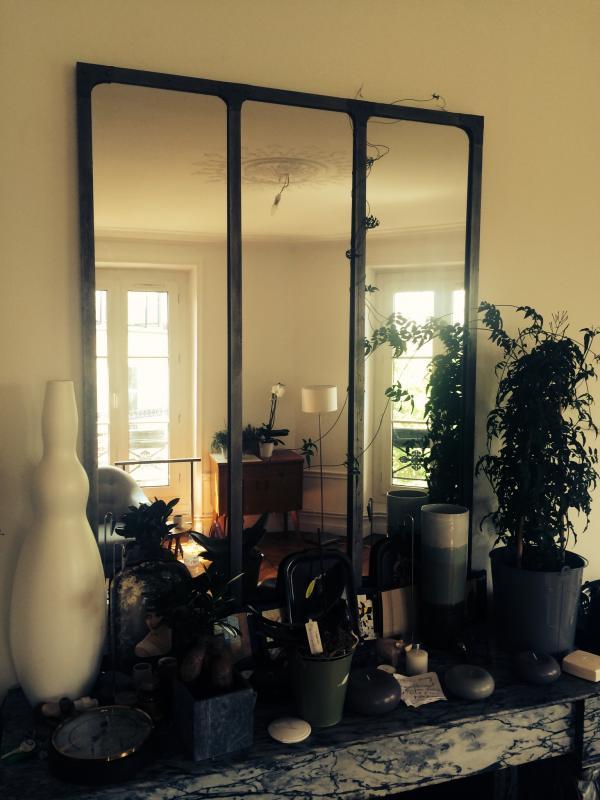 Werkstatt-Spiegel von einer Kletterpflanze erobert!