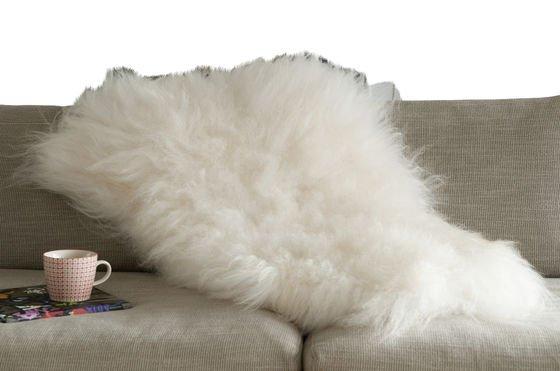 Isländisches Schafsfell ohne jede Grenze