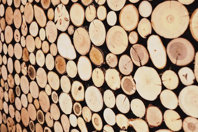 Parete di legno